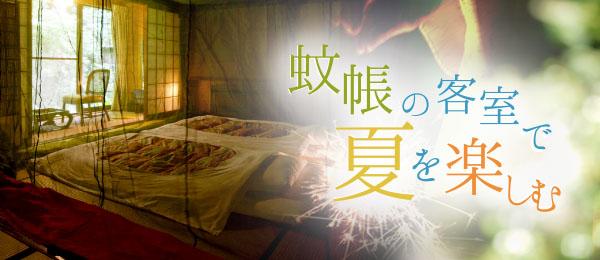 蚊帳の客室で夏を楽しむ