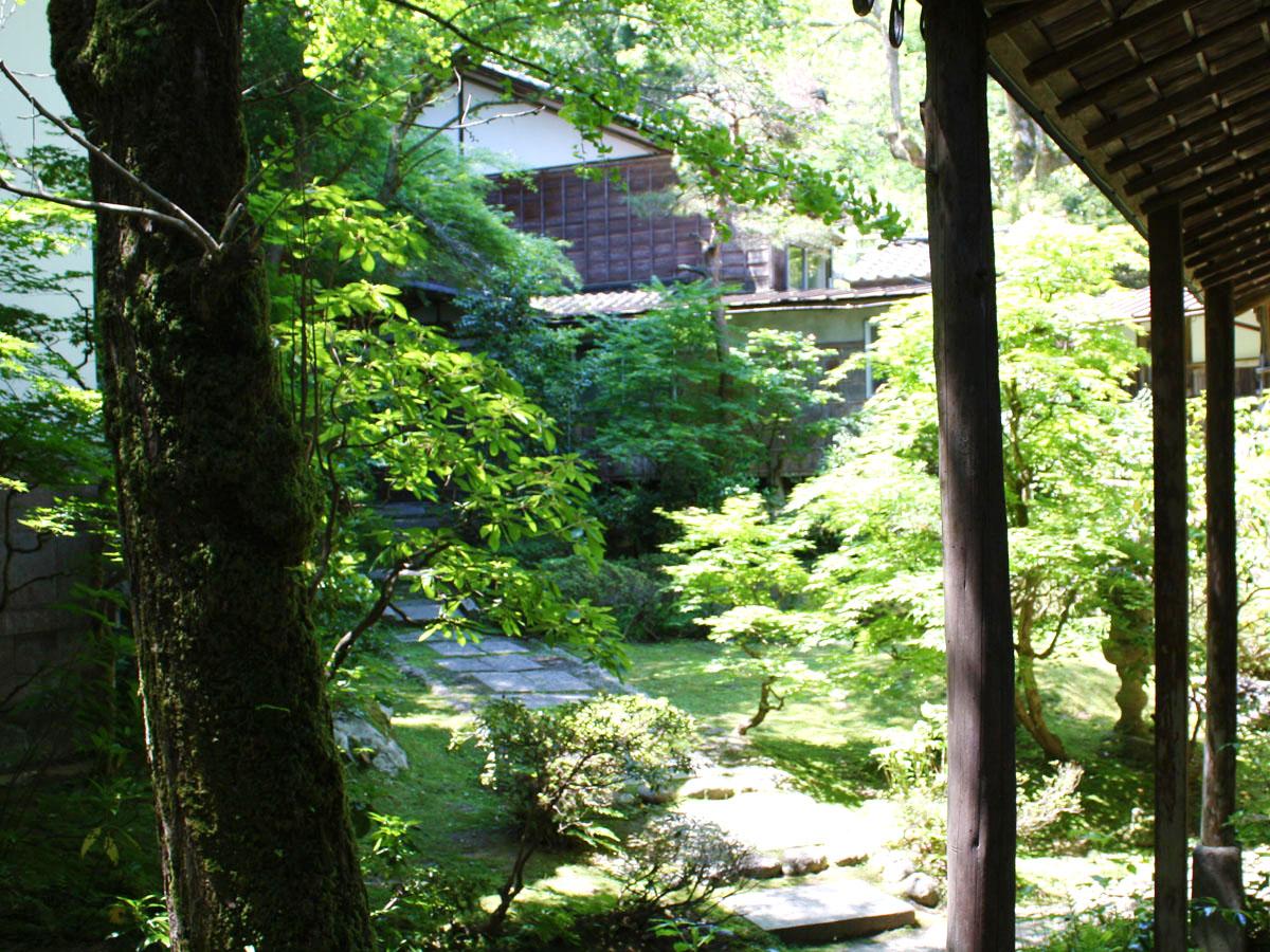 180522新緑の庭IMG_8691